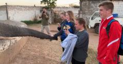Az elefánt nem akart a fotókon szerepelni, így pofonvágta a lányt