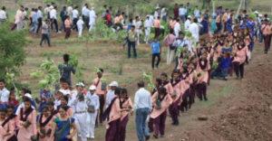 12 óra alatt 66 millió fát ültettek ki Indiában a klímaváltozás ellen hirdetett kormányzati kampány keretében