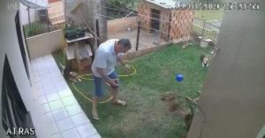 Briliáns ötlete támadt az év kertészének. A gáz és a gyufa lesz a legjobb. (Harc a hangyákkal)