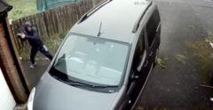 A férfi egy téglával akarta betörni a kocsi ablakát, de az visszapattant és telibe találta a fejét (Instant karma)
