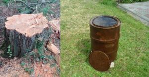 Hogyan lehet eltávolítani a földből fa kivágása után a fatönköt a gyökereivel együtt?