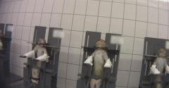 A felvételek, amelyek elborzasztották a világot. Egy német laboratóriumban állatokon tesztelik a vegyszereket