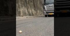 Egy tojás segítségével mutatta be, milyen mesterien tudja vezetni a teherautót