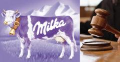 Egy orosz férfi beperelte a Milkát a vásárlók félrevezetése miatt. Egy apróságot nem vett észre, és elveszítette a pert