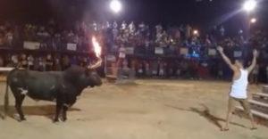 Nem a legmegfelelőbb bikát provokálta. A menekülési útvonalat ne gondolta ki alaposan