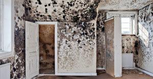Az ingatlanügynökök megosztották a legfurcsább házakat, melyekkel munkájuk során találkoztak