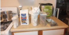 """14 macska, aki úgy volt vele: """"Ha beleférek, beleülök"""""""