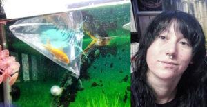 Nyert egy cuki aranyhalat. Akkor még nem sejtette, hogy mi lesz belőle