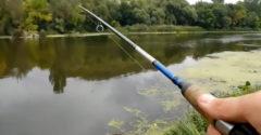 Amikor azt hiszed, hogy találtál egy jó nyugodt horgászhelyet (Ukrajna)
