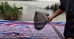 Öngyilkosságot követett el a hal (Szerencsés halász)