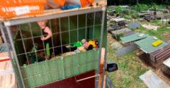Kutyákat jöttek menteni a helyszínre. Az egyik kutyaketrecben egy 18 hónapos babát is találtak.
