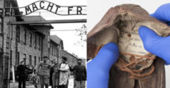 Üzenetet találtak egy, a koncentrációs táborban fogvatartott 6 éves kisfiú cipőjében
