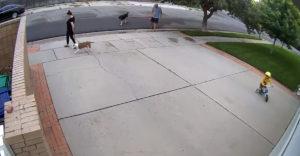 Egy kisfiú folyton a férfi garázsa előtt biciklizett, a reakciója mindenkit meglepett