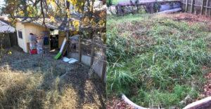 A férfi vett egy romos házat 20000 dollárért. Az udvaron egy kincset talált, ami felújítva megnövelte a ház értékét