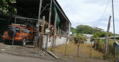 A rendszeresen citromot lopó gazfickó ellen áramot vezettek a kerítésbe. (Fájdalmas lecke)