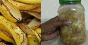 Ezért ne dobd ki a banánhéjat, csodákat tesz a növényeiddel