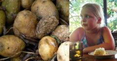 A 8 éves kislány története, aki a krumpli miatt veszítette el a családját. A hiba, melyre neked is ügyelned kellene