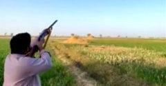 A kacsa bosszút állt a vadászon, aki végezni akart vele (Szemet szemért)