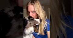 Mi történik, ha megpuszilod a kutyád? (Egy adag cukiság)